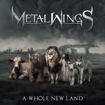 (c) Metalwings