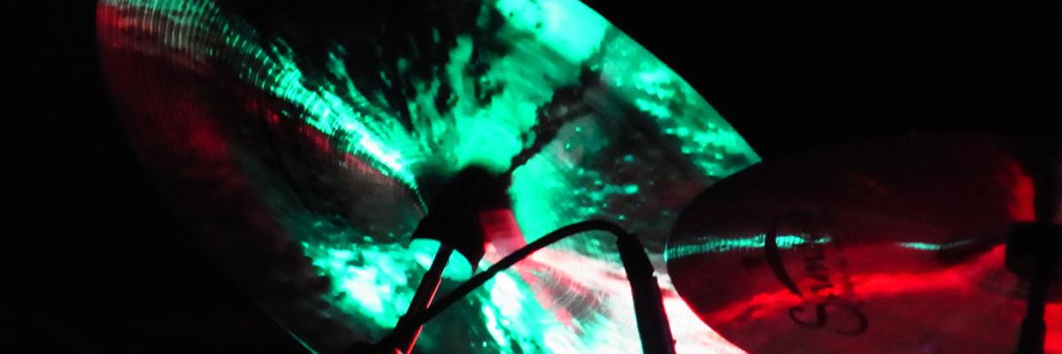 Cymbal Green (c) Iris Haubold 2013